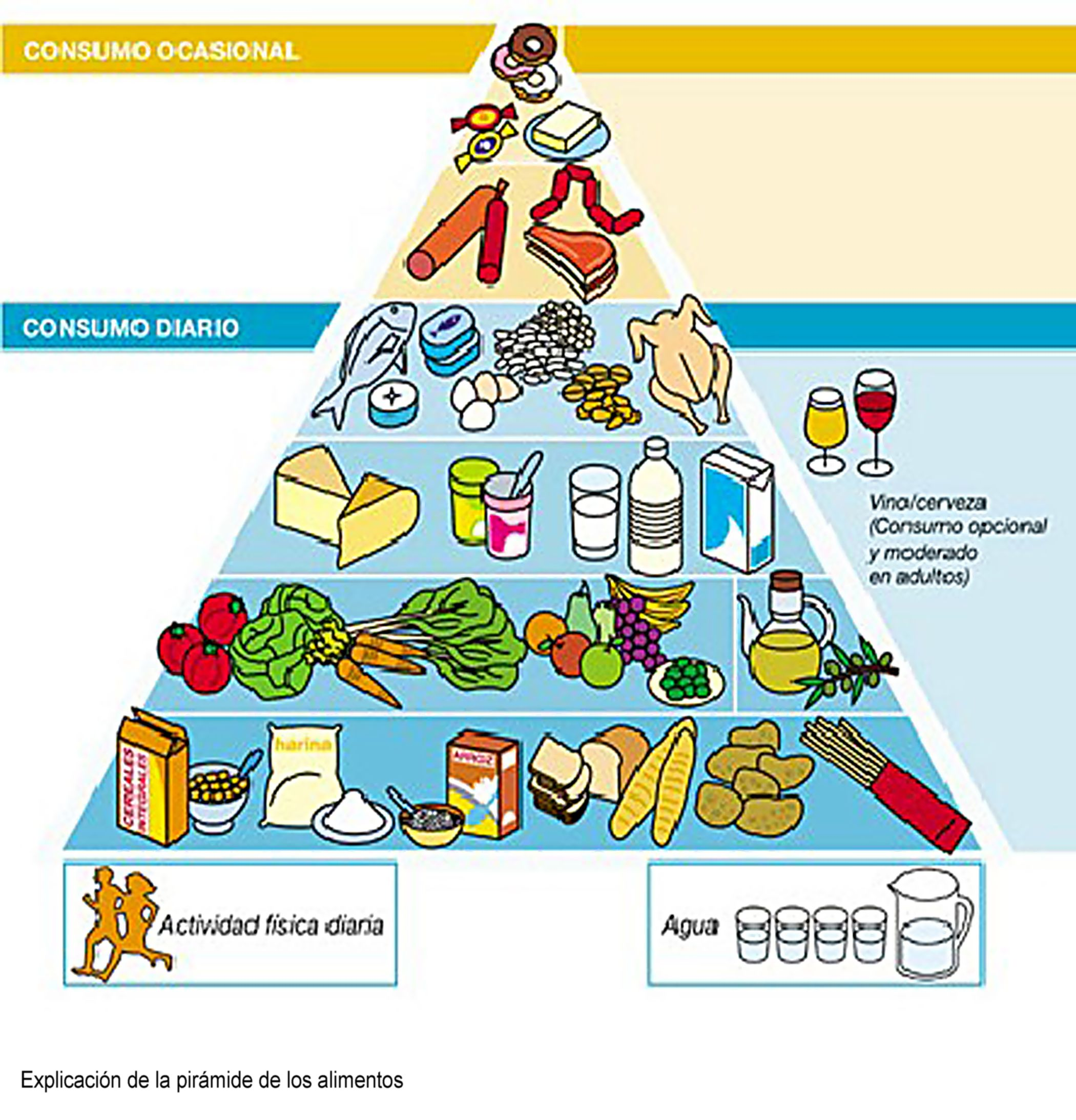 encuentran proteina lactancia: