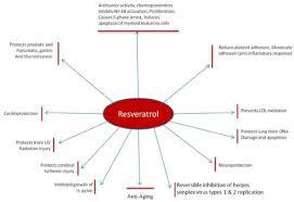 transresveratrol